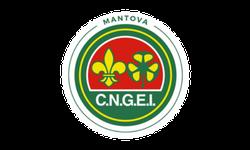 sponsor CNGEI